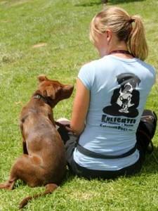 Enlighten Dogs, dog training, dog trainer, yucaip, redlands, beaumont