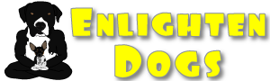 Enlighten Dogs Training
